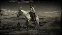 Flaxen Roan Tennessee Walker loading screen