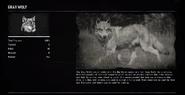 WolfGrayProfileRDR2