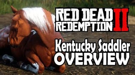 Red Dead Redemption 2 Horses - Kentucky Saddler Overview