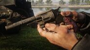 Micah's gun