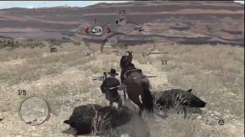 Red Dead Redemption Best Boar Hunting Location & Legendary Gordo Boar In *HD*(Funny)