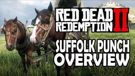 Red Dead Redemption 2 Horses - Suffolk Punch Overview