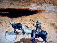 War Horse bug
