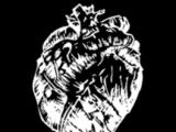 Undead Bear Heart