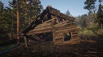 Limpany's ruined house