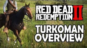 Red Dead Redemption 2 Horses - Turkoman Overview