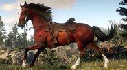 RDR 2 Arabian Horse