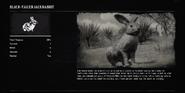 RabbitProfileRDR2