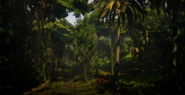 Jungles in Guarma 12