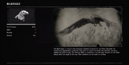 EagleProfileRDR2