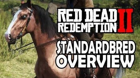 Red Dead Redemption 2 Horses - American Standardbred Overview