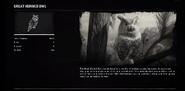 OwlGreatProfileRDR2