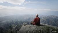 RDR2 POI 24 Meditating Monk 01