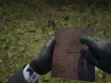 Journal (RDR 2)