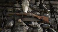 Double-barreled Shotgun in Six Point Cabin
