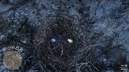 Ammolite and Fluorite in nest RDR2