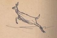 Journal Arthur Whitetail Deer
