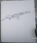 RDR2 POI 44 Whale Bones 03