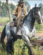 War Horse II