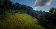 Jungles in Guarma 6