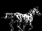 Horse Hide