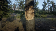 RDR2 POI 12 Faces in Trees 02