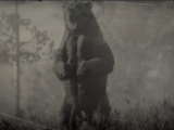Grizzly (RDR 2)