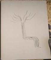 RDR2 POI 37 Trail Trees (I) J