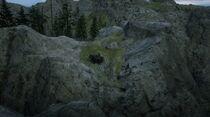 Pinkertons spawn near Nekoti Rock, out of map glitch