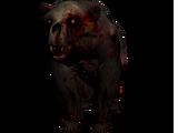 Undead bear