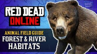 Red Dead Online - Forest & River Habitats Animal Locations Guide Naturalist Role