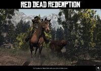 Rdr bear horse02