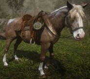 Maggie-horse