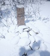 Davey-Callander-Grave