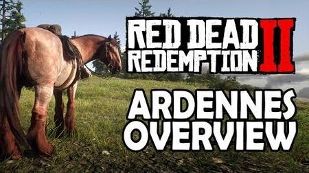 Red Dead Redemption 2 Horses - Ardennes Overview