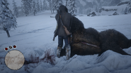 Skinning Grizzly