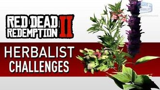 Red Dead Redemption 2 - Herbalist Challenge Guide