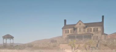 Tumbleweed mansion
