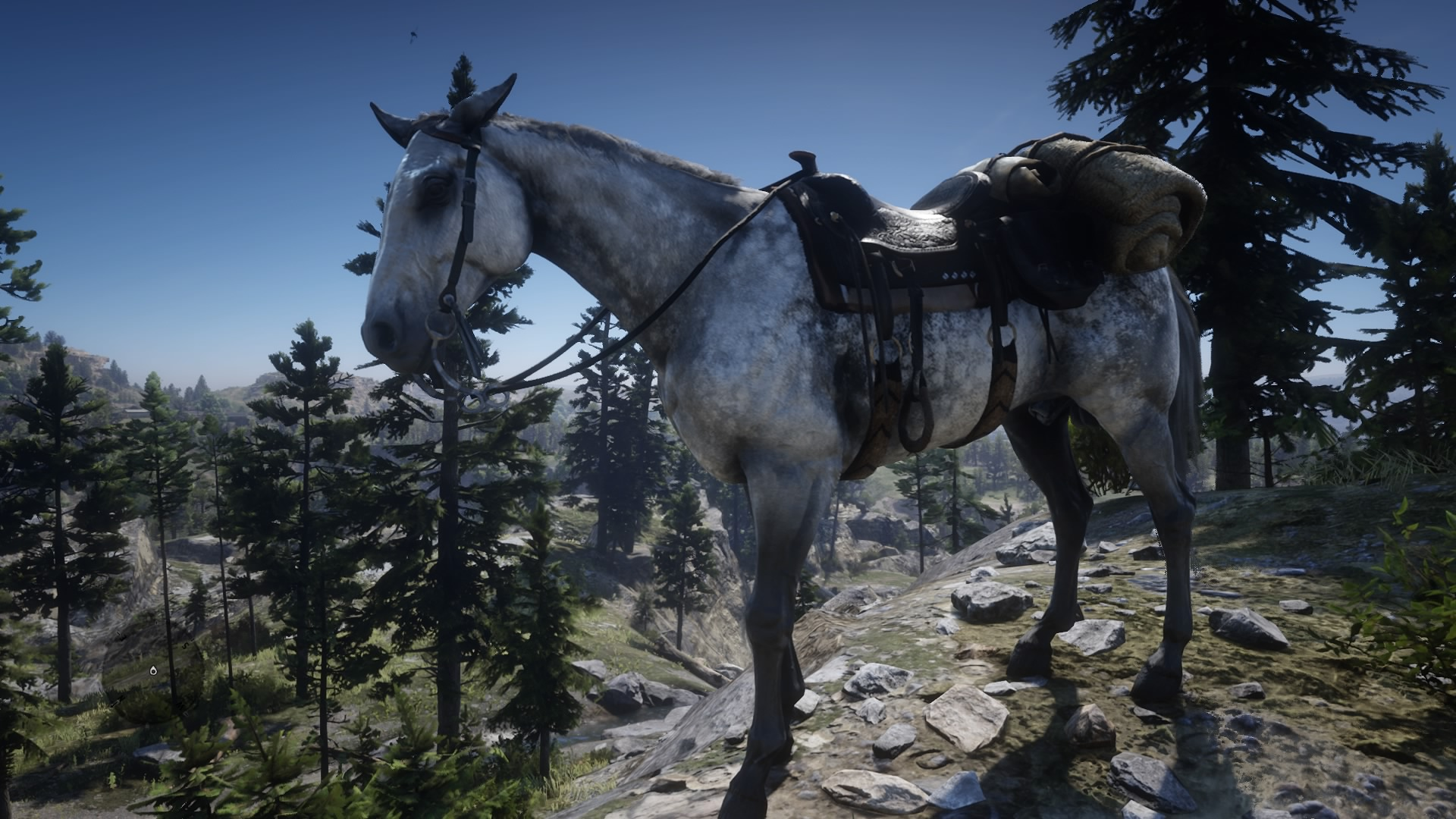 Thoroughbred | Red Dead Wiki | FANDOM powered by Wikia