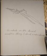 RDR2 POI 32 Sperm Whale Bones J
