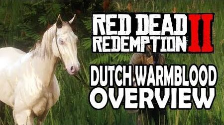 Red Dead Redemption 2 Horses - Dutch Warmblood Overview