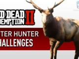 Master Hunter Challenges in Redemption 2
