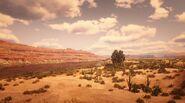 Rio del Toro in Red Dead Redemption 2