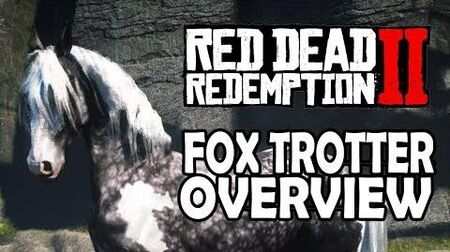 Red Dead Redemption 2 Horses - Missouri Fox Trotter Overview