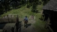 Red Dead Redemption 2 Screenshot 2020.06.04 - 18.38.58.84