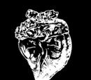 Undead Horse Heart