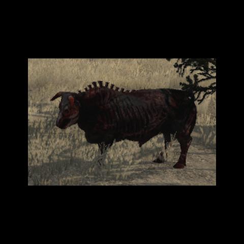 Taureau mort-vivant dans la region de <a href=