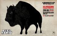 Bison02