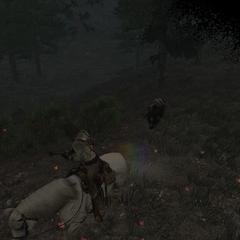 sanglier mort-vivant chargent sur le joueur.
