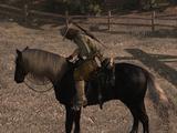 Cheval de bataille